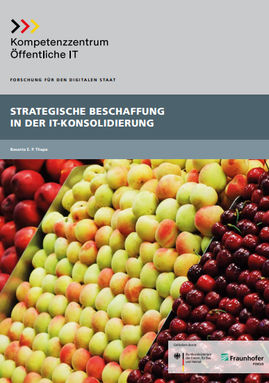 Whitepaper Strategische Beschaffung in der IT-Konsolidierung