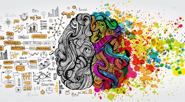 Idee Ideenreichtum Umdenken Wissenschaft Forschung Neu Diversität Left right human brain concept Creative part and logic part with social and business doodle
